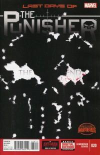Punisher V10 #20
